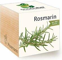 Feel Green Ecocube Rosmarin, Bio Samen,