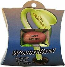 Feel Green WonderBean Happy Birthday