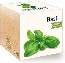 FeelGreen Ecocube Bio-Basilikum zum Selberzüchten
