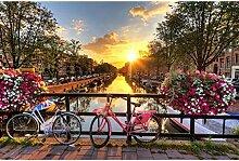 FEI HOME SunsetPT Sunset Bike, Holzpuzzle,