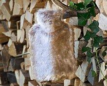 Fell-Wärmflaschenhülle Fuchs hellbraun-grau mit Fashy Wärmflasche ca. 2 Liter Fassungsvermögen