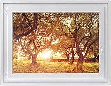 Fenster-Deko - Fenster-Bild | selbstklebende Glasdekorfolie - Klebefolie für Fenster | Küchenfenster verschönern - einfach anzubringen - rückstandslos ablösbar | Design Tree Sunlight - 100 x 70 cm