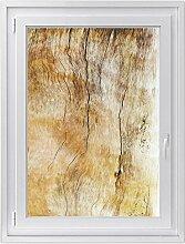 Fenster-Deko - Fenster-Bild | selbstklebende Glasdekorfolie - Klebefolie für Fenster | Küchenfenster verschönern - einfach anzubringen - rückstandslos ablösbar | Design Unterholz - 70 x 100 cm