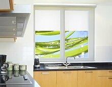Fensterbild Fresh Green Natur wasser tropfen blätter pflanze Fenstersticker Fensterfolie Fensteraufkleber Fenstertattoo Glas-Sticker Fensterdeko Fensterdekoration Größe: 144cm x 280cm