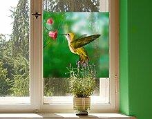 Fensterbild Kolibri und Blüte Amerika Vogel Blume Pflanze Fliegen Fenstersticker Fensterfolie Fensteraufkleber Fenstertattoo Glas-Sticker Fensterdeko Fensterdekoration Größe: 21cm x 21cm