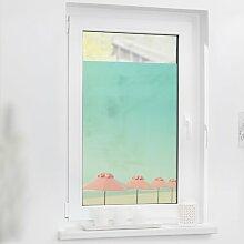 Fensterbild Sonnenschirme ScanMod Design