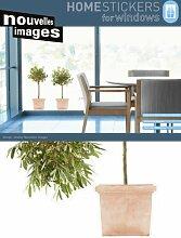 Fenstersticker XXL Olivenbäume