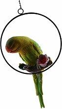 Fenteer Papagei Ara Dekofigur Vogelfigur für