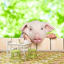 Ferkelschwein Wandbild Nutztiere Foto-Tapete