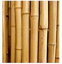 FERRITALIA Bambusrohre zur Abstützung von Gemüse