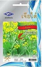 Ferry 3 Packungen: 4350 Samen Thai Gemüse