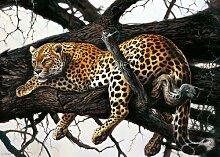 Fertig-Bild - Renato Casaro: Laziness 50 x 70 cm