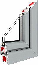 Festverglasung Fenster Silber V beidseitig 1 flg.