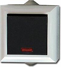 Feuchtraum Tasterschalter m. Kontrolllampe Aufputz Schalter AP IP54 16A/250V grau