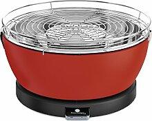 Feuerdesign 4260429920419 Grill und Grillzange