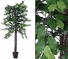 Ficus Benjamini, künstliche Baum mit Multi Stamm,