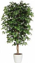 Ficus Benjamini Kunstpflanze 120 cm mit Naturstamm