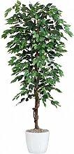 Ficus Benjamini Kunstpflanze 150 cm mit Naturstamm