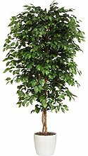 Ficus Benjamini Kunstpflanze 210 cm mit Naturstamm