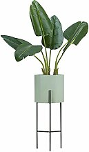 FKflower Blumenständer Minimalistische Stativ