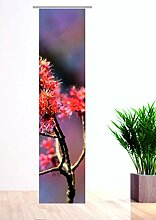 Flächenvorhang Blütenmomente2 260 cm hoch, 60 cm