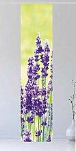 Flächenvorhang Der Lavendel 1, 260 cm hoch, 60 cm