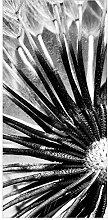 Flächenvorhang Set Pusteblume Schwarz & Weiß