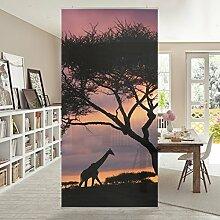 Flächenvorhang Set Safari in Afrika Wildnis Sonnenaufgang Giraffen Baum 250x120cm | Schiebegardine Schiebevorhang Raumtrenner Vorhang Raumteiler Gardine Paravent Wandbild XXL Deko Dekor Größe: 250 x 120cm inkl. transparenter Halterung