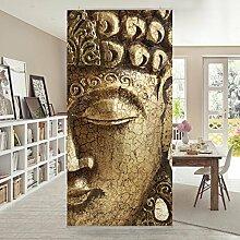 Flächenvorhang Set Vintage Buddha 250x120cm | Schiebegardine Schiebevorhang Raumtrenner Vorhang Raumteiler Gardine Paravent Wandbild XXL Deko Dekor | Größe HxB: 250x120cm ohne Halterung
