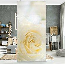 Flächenvorhang Set White Rose 250x120cm | Schiebegardine Schiebevorhang Raumtrenner Vorhang Raumteiler Gardine Paravent Wandbild XXL Deko Dekor | Größe HxB: 250x120cm inkl. transparenter Halterung
