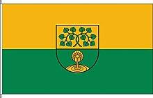 Flagge Fahne Kleinflagge Klein Ammensleben - 40 x 60cm