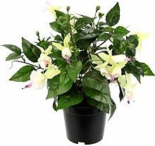 Flair Flower Künstliche Zierpflanze Fuchsien im