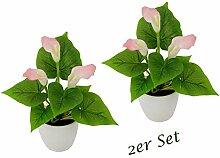 Flair Flower Mini Topf, 2er Set, Rosa,