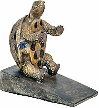 Flame Frottee-Schildkröte, die, die über die
