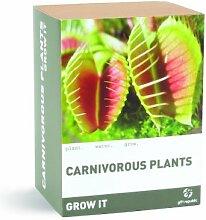 Fleischfressende Pflanze - Selbst anbauen - Se