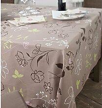 Fleur De Soleil n300cleu Tischdecke QUADRATISCH Beschichtete Baumwolle 160x 300cm, Stoff, Taupe/Rose/Vert/Blanc, 300x160x0.2 cm