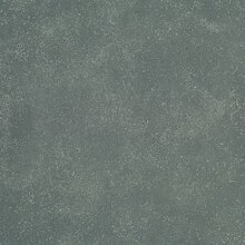 Fliese Fossil Grau 60/60 cm Miami Indoor