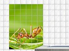 Fliesenaufkleber Fliesenbild Tiere Ameise Blatt Baum Pflanze Küche Bad (Fliesenmaß:10x25cm(BxH)//Bildformat:120x180cm(BxH))