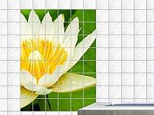 Fliesenaufkleber Fliesenbild weiße Blüte Teichpflanze Wasserpflanze (Fliesenmaß:20x10cm(BxH)//Bildformat:70x105cm(BxH))