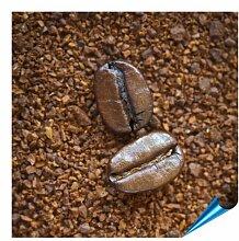Fliesenaufkleber für Bad und Küche - 15x15 cm - Motiv Coffee Beans - 10 Fliesensticker für Wandfliesen
