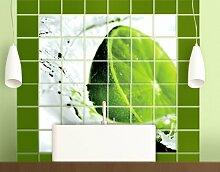 FliesenBild Splash Lime