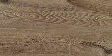fliesenmax Feinsteinzeug Bodenfliese Siena marrone