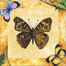 Fliesenwandbild - Buckeye Schmetterling mit