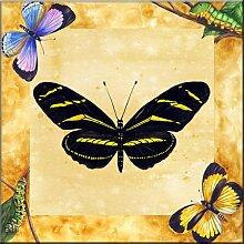 Fliesenwandbild - Zebra-Schmetterling mit