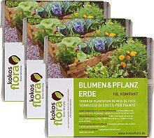 Floragard Pflanzerde Kokosflora kompakt, Blumen-