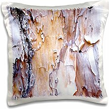 Florene Trees - Natural Tree Scales Closeup - 16x16 inch Pillow Case (pc_62283_1)