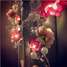 floristlighting 20LED Lichterkette rot weiß