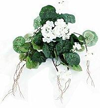 FloristryWarehouse Künstliche Geranie Seide Weiß