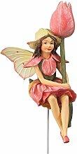 Flower Fairy Fee in Box Tulpe 9cm