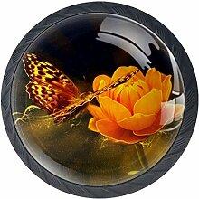 Flower Orange Butterfly 4 Stück Schubladenknöpfe